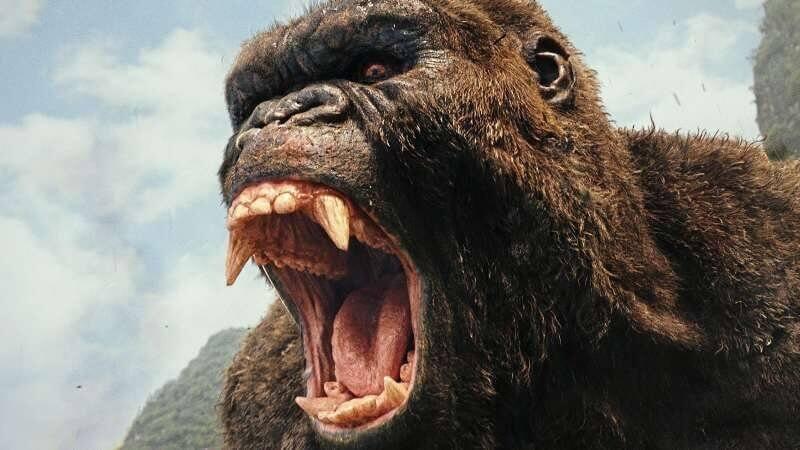 Braucht ein Waxing: Kong